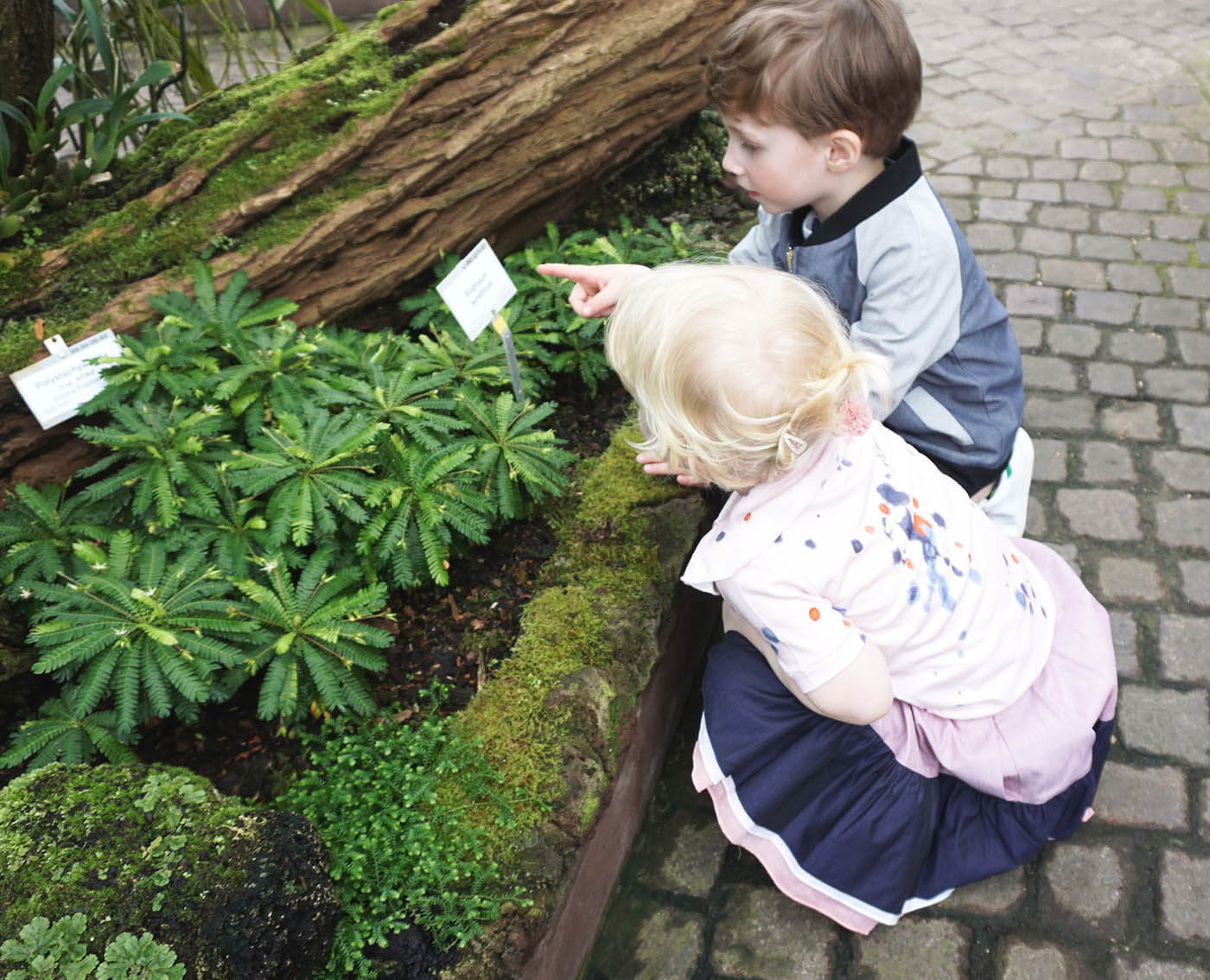 pepe and nika at botanical garden with summer clothes by lovekidswear